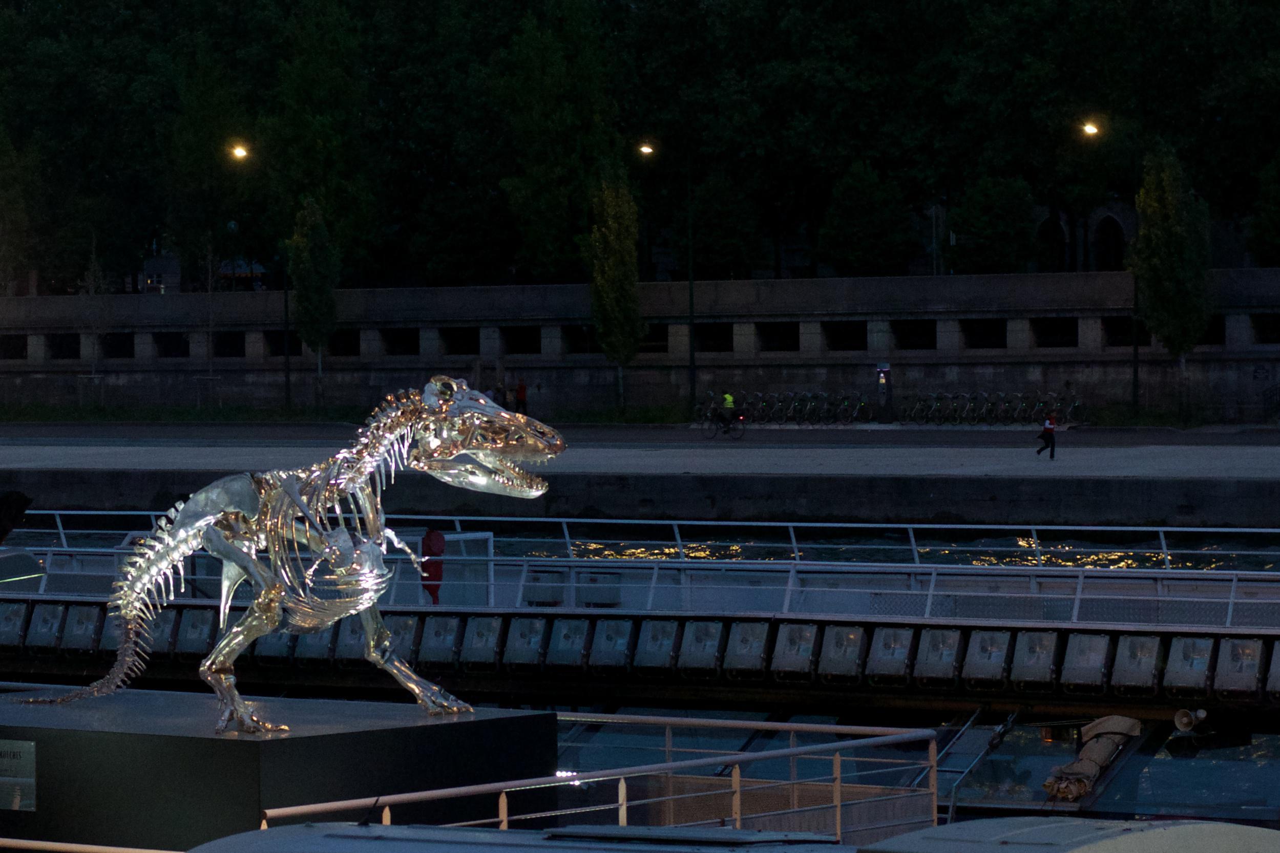 t-rex_14030295622_o